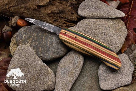 Due South Knives Carving Wharncliffe #4