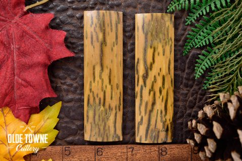 """Handle Material Mammoth Ivory #2 1/4"""" x 1 1/8"""" x 4"""""""