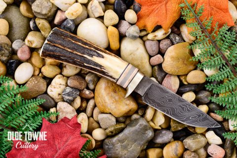 Will Dutton Hunter Stag Damascus 15A (C)